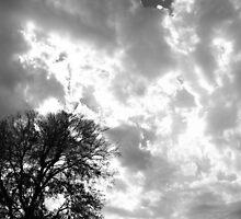 Fiery Sky - Krause Springs  by Benjamin  Saucedo