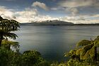 Snow Capped Mt Tarawera by Michael Treloar