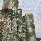 Enniscorthy castle, Wexford, Ireland by buttonpresser