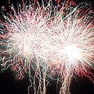 Fireworks- Venitian Festival, Charlevoix, MI by Melissa Delaney