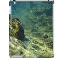 Underwater iPad Case/Skin