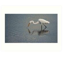 Fisherbird - white egret Art Print