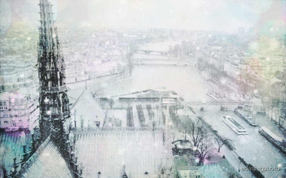 Dreaming of Paris - View of the Seine from Notre Dame by edarlingphoto