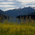 Birkenhead Lake by Michael  Moss