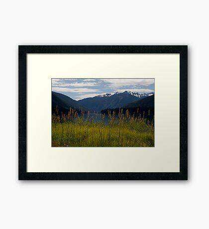 Birkenhead Lake Framed Print