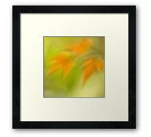 a glimpse of spring Framed Print
