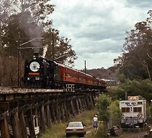 Eltham Festival train on Viaduct 199211150003  by Fred Mitchell