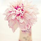 Dinnerplate Dahlia by edarlingphoto