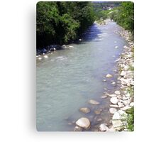 A Stream in the Green Canvas Print