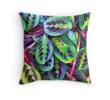 Variegated Leaves 1 Throw Pillow