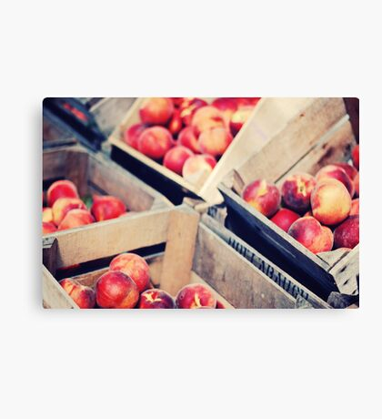Harvest Peaches, Farm Stand in Virginia Canvas Print