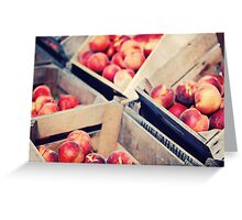 Harvest Peaches, Farm Stand in Virginia Greeting Card