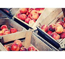 Harvest Peaches, Farm Stand in Virginia Photographic Print
