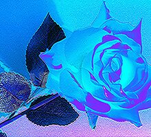 Blue Rose by liquidnoir
