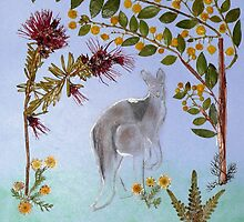 Pressed Wildflowers & Kangaroo. by CamelotScribe