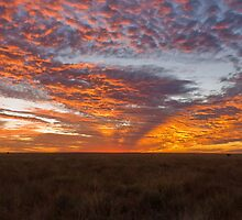 Ilfracombe Sun * Ilfracombe, Queensland by Deon Mackay