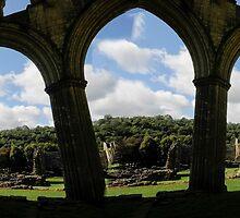 Rievaulx Abbey by jon  daly
