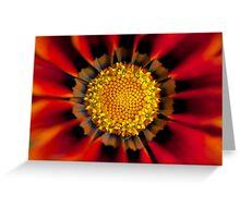 Floral fireworks Greeting Card