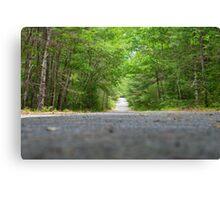 Woods Await Canvas Print