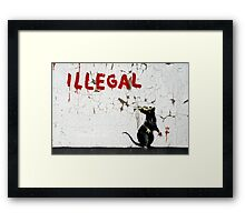Fitzrovia Rat by Banksy Framed Print