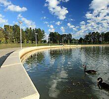 Emu Inlet, Lake Ginninderra by buildings