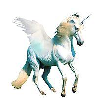 Unicorn by suburbia