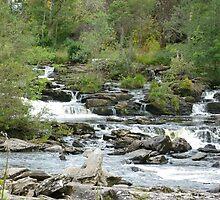 Falls of Dochart by Lynn Bolt