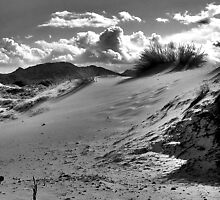 Dunes at Capo Comino by Michele Filoscia