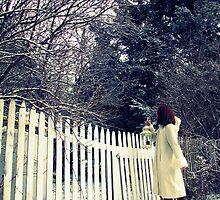 Winter Wonder by kflanary
