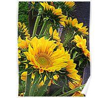 Summer Sunflowers at a Farmer's Market Poster