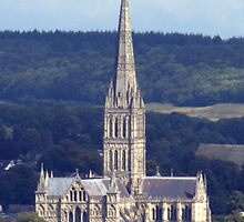 Salisbury Cathedral - Cathedral Church of Saint Mary by Clive