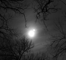 Haunting Moon - Krause Springs by Benjamin  Saucedo