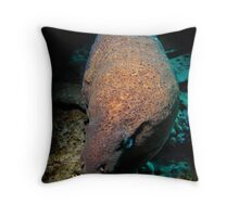 Moody Moray...... Throw Pillow
