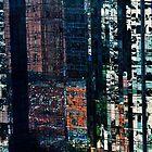 Boston Reflections by Susana Weber