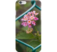 Common Lantana and Fence iPhone Case/Skin