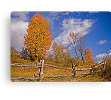 Oh! fence! Canvas Print