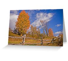 Oh! fence! Greeting Card