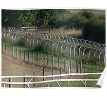 A Magpie's Fence Poster