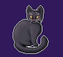 Pixel Black Cat by skywaker