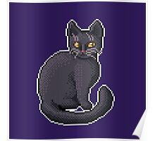Pixel Black Cat Poster