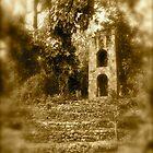 Overgrowth on Sugar Mill- St. Kitts by Jenny Hambleton