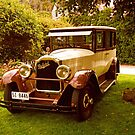 1926 Packard - 333 Limo by Marilyn Harris