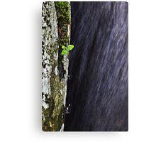 water flows by. Canvas Print