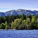 Big Mountain (Whitefish, Montana, USA) by rocamiadesign