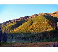 Apgar Mountains (Glacier National Park, Montana, USA) Photographic Print