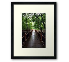 Light at the end of the bridge  Framed Print
