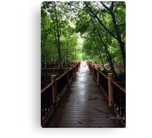 Light at the end of the bridge  Canvas Print