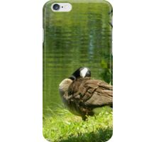 Hanging Out By the Little Green Pond iPhone Case/Skin