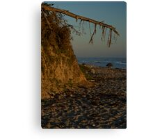fey santa barbara sunset Canvas Print