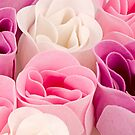 Soap roses by homydesign